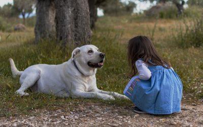 Derfor er det godt for dine børn at vokse op med en hund
